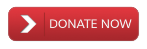 donate-button-png